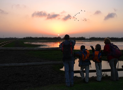 Observing birds at sunset in the Natural Park of Aiguamolls de l'Empordà. (© Lluís Carro)