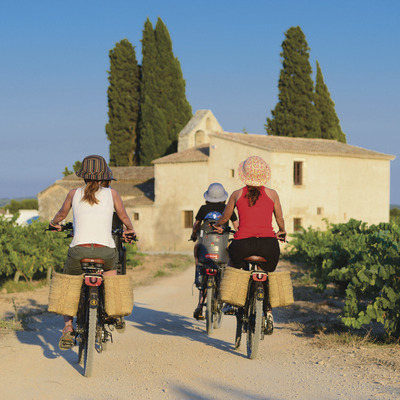Bicycle route along a path among vineyards. (© Marc Castellet)