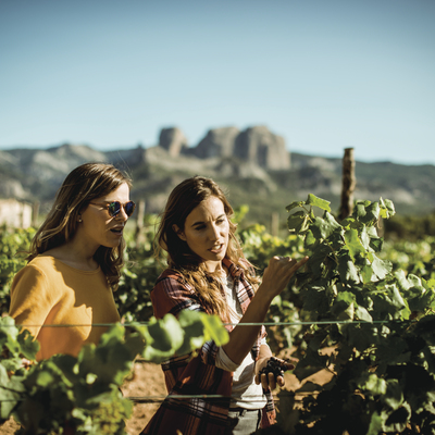 Two young people looking at grape vines (© )
