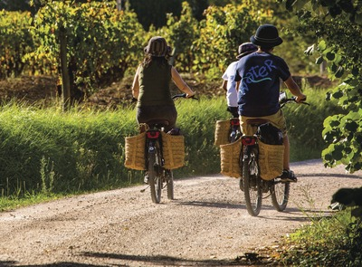 Ride on an electric bike by the vineyards. (© Consuelo Bautista)