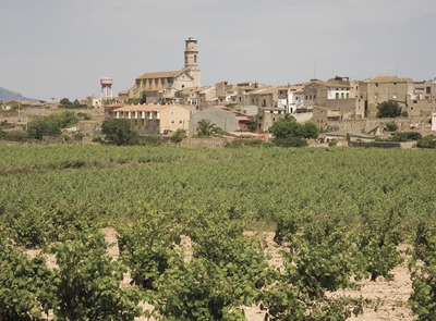 View of the town with vineyards  (© Miguel Raurich)